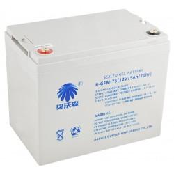 Bateria 12V 75AH do wózka WS15